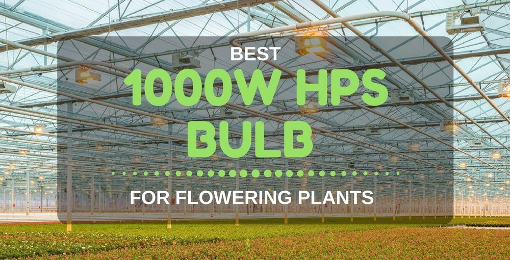 best HPS grow lights