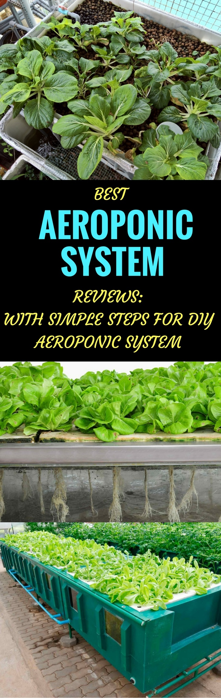 best aeroponic system pin it