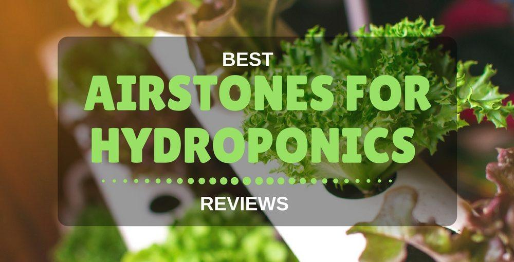best airstone for hydroponics
