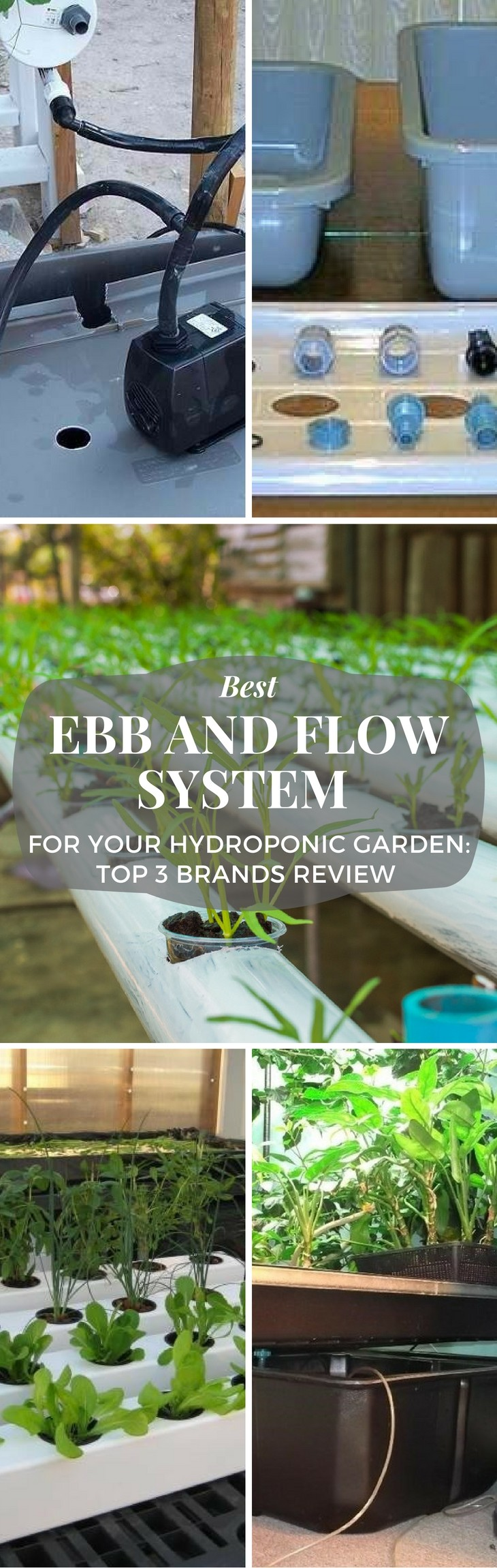 best ebb and flow system pin it