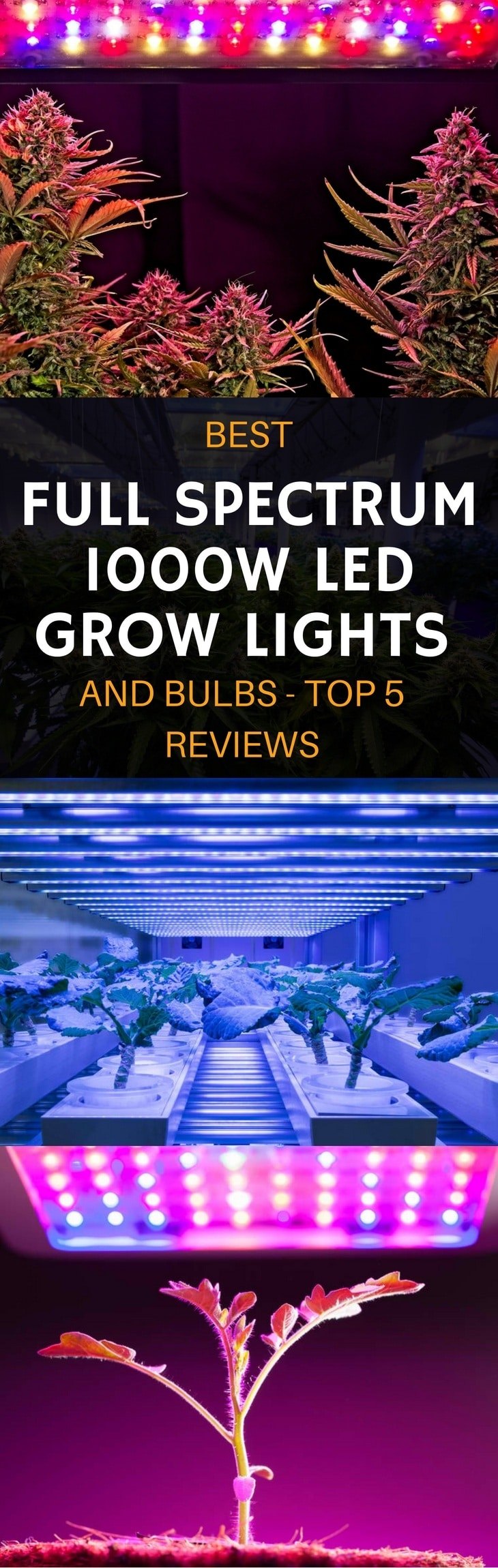 best full spectrum 1000w LED grow lights pin it