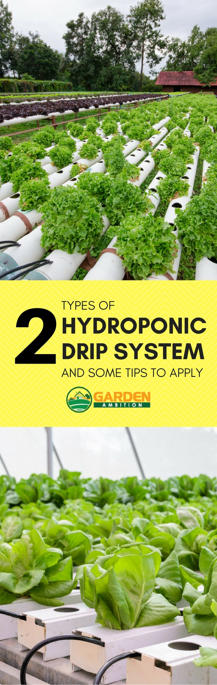 hydroponic drip systems pin it