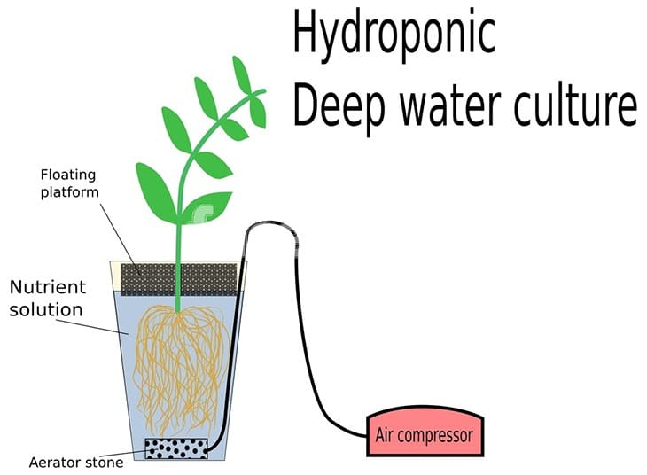 If you are a hydroponic gardener, you will need an air pump so that you can take advantage of air diffusion into water