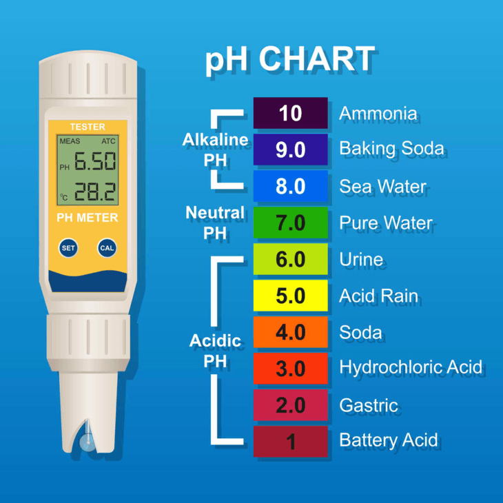 pH meters with high accuracy allows you to provide the right pH levels for your plants in a hydroponic setting.