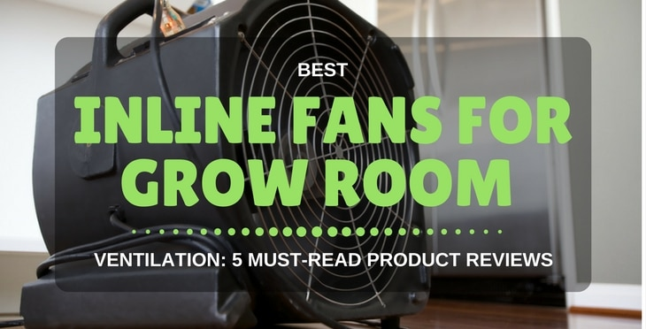 & Best Inline Fan For Grow Room Ventilation: 5 Must-Read Product Reviews