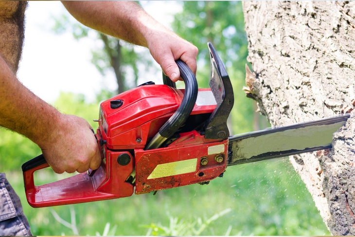 Chainsaws with a two-stroke engine are typically lighter and cheaper