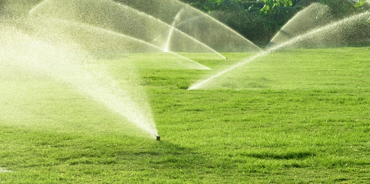 Conventional sprinklers are commonly utilized for yards while drip lines are ideal for garden beds
