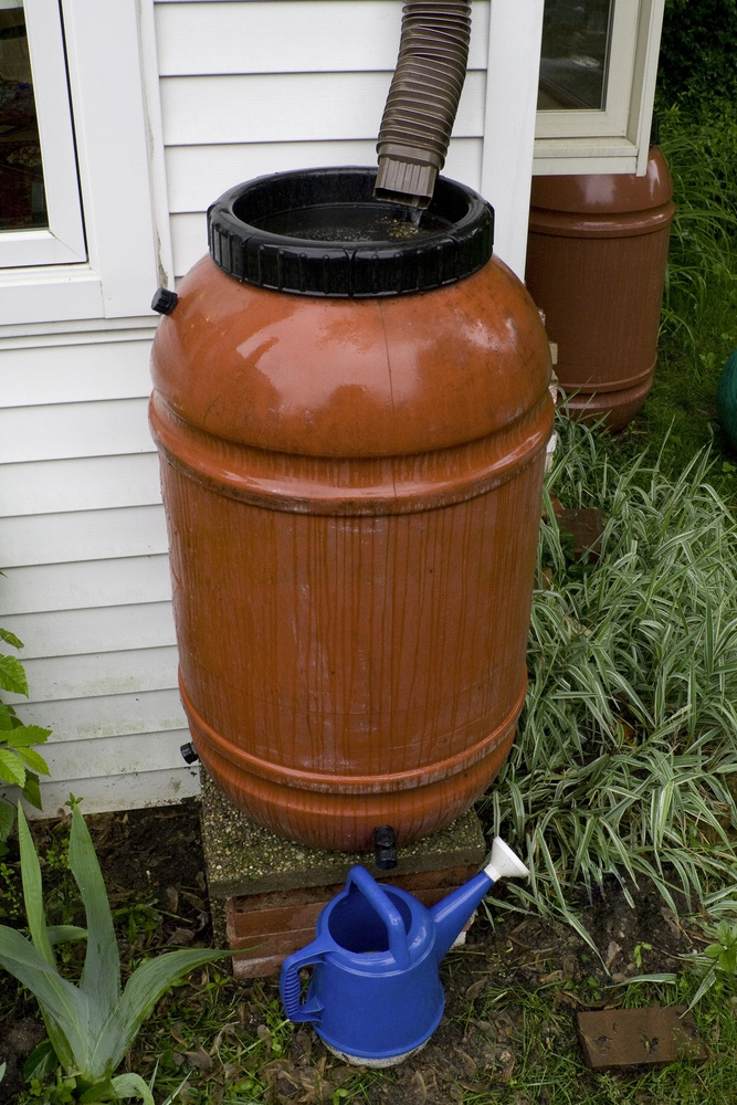 Rain barrels can be used to store rainwater