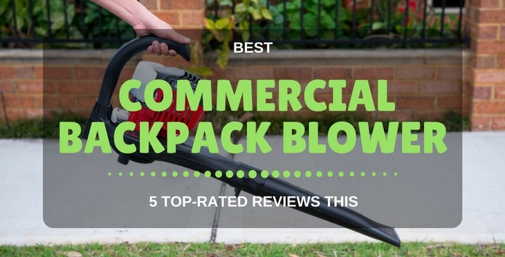best commercial backpack blower