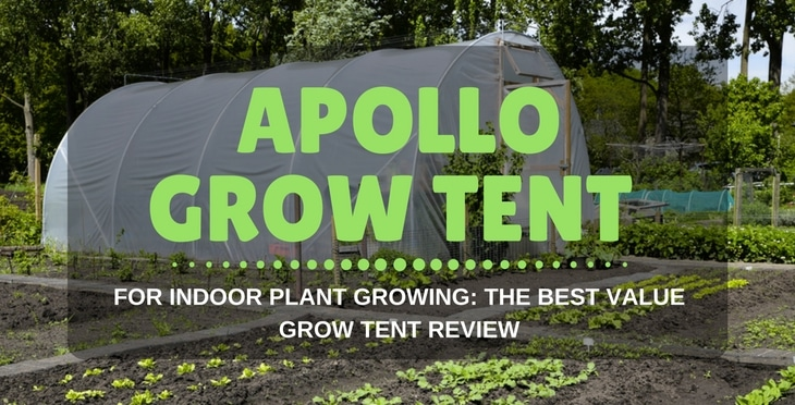 Yield Lab Grow Tent. Top 10 Best Grow Tents For Growing Cans Heavy & Indoor Growing Tents Reviews - Best Tent 2018