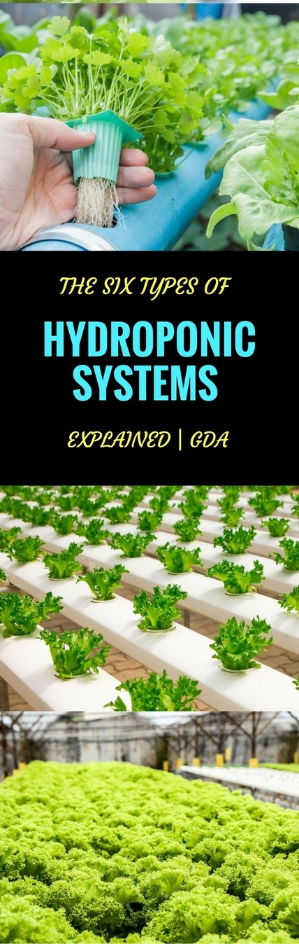 hydroponic systems pin it