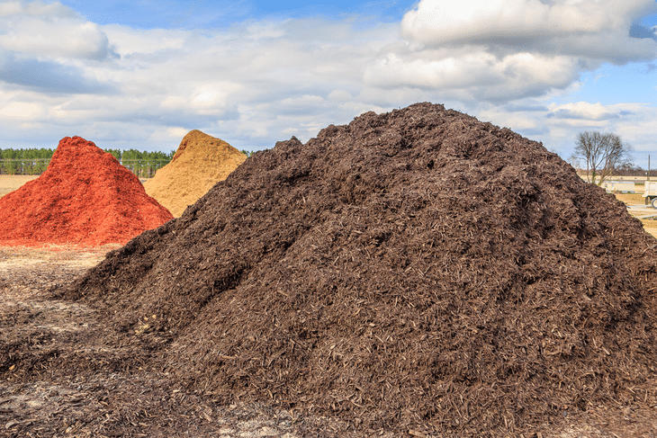 Mulch is one of the best types of fertilizer to use for your plants