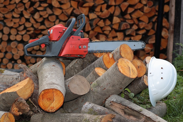 Stihl chainsaws are also popular in home use - Best Stihl Chainsaw For Cutting Firewood