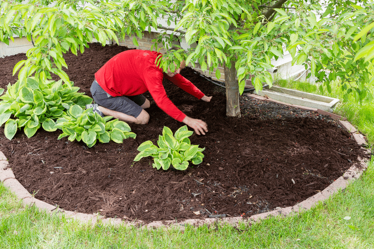 With a really good machine, you'll have a lot of mulch to feed to your garden