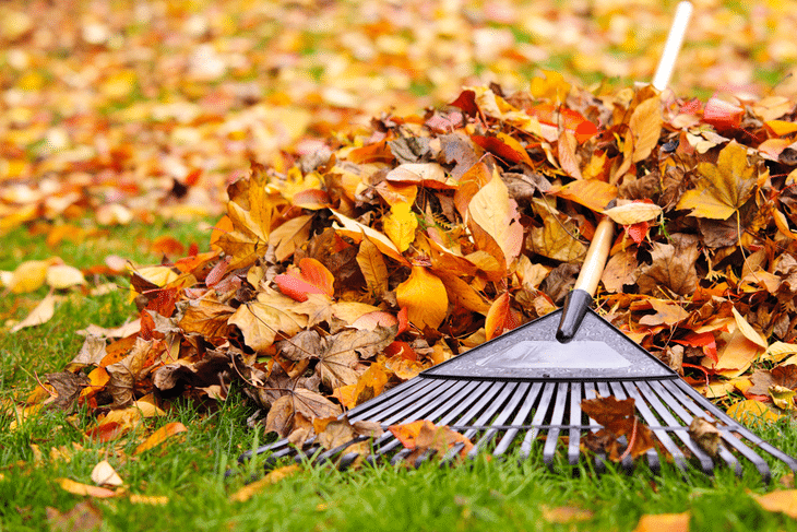 You can use a chipper shredder to clean up debris from the yard, especially during the fall season
