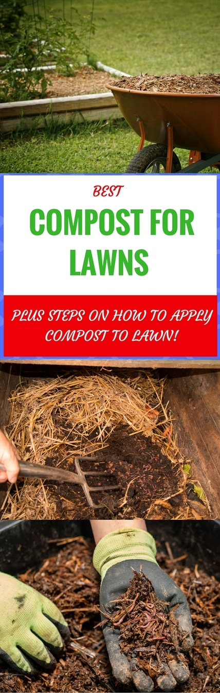 best compost for lawns pin it