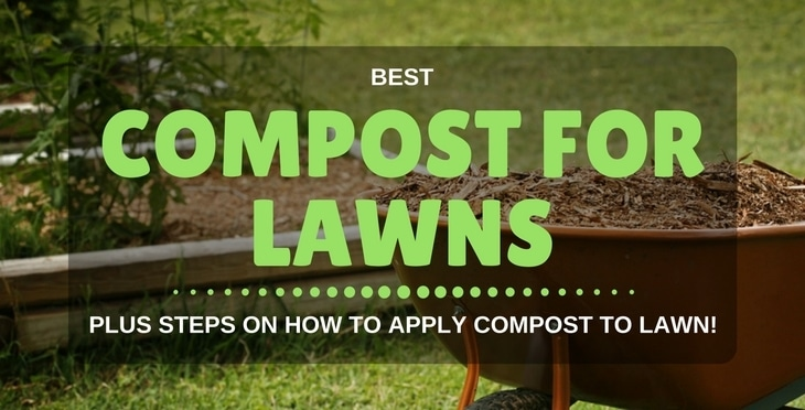 best compost for lawns