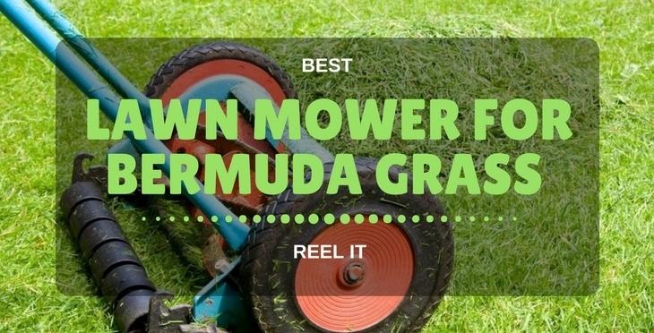 best lawn mower for Bermuda grass