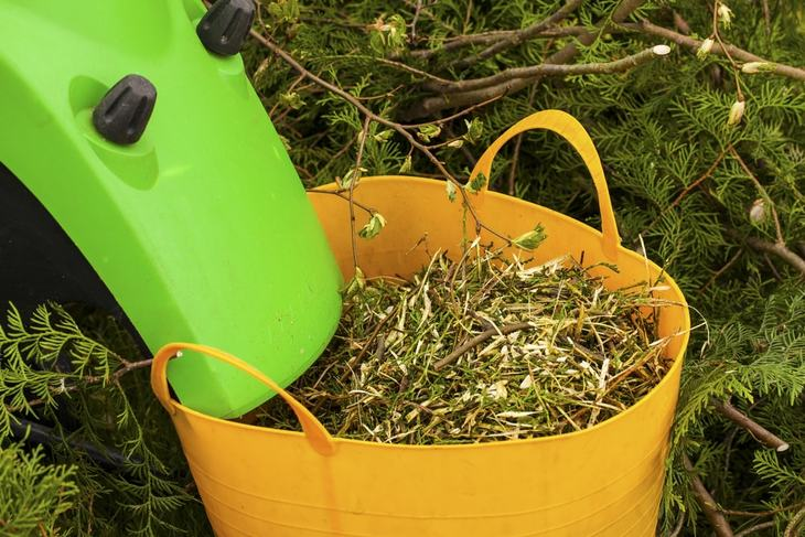 A leaf shredder can be used to create mulch that can protect plants against extremely cold temperature