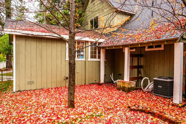 Fallen leaves and twigs can be turned into mulch for fertilizer