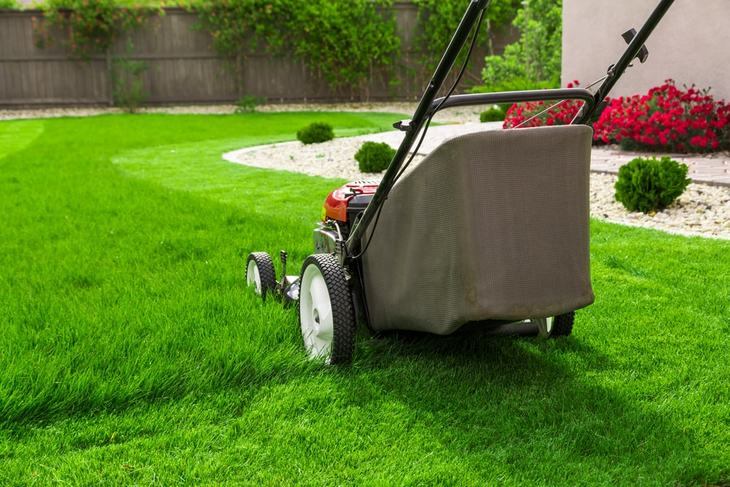 Moving the mower over the cut grass several times results in fine grass clippings