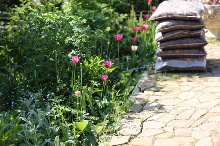 A beautiful garden enhances your home's ambiance