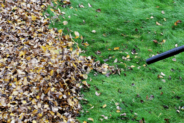 Garden leaf vacuums are essential too if you want to keep them directly in bags