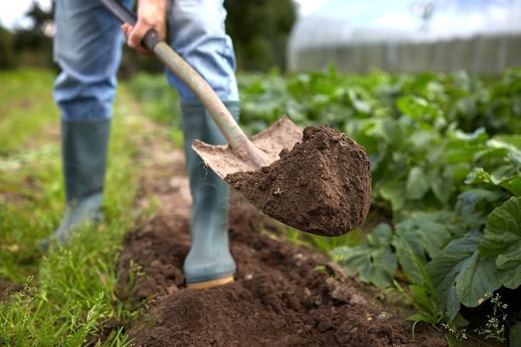 Manual digging in your garden can take overhauling months to complete but with augers, it can be cut down to days or weeks