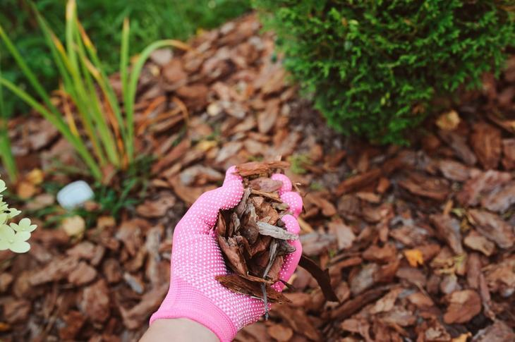 Mulch is a good way to cultivate the soil in your garden or yard