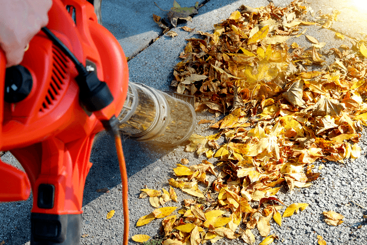 Smaller leaf blowers are only essential for small cleanups in the driveway or sidewalks