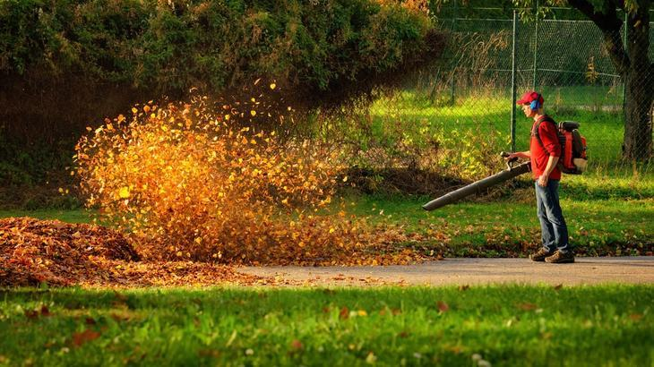 To make your task less tedious, use a blower vacuum to gather all leaves in one pile