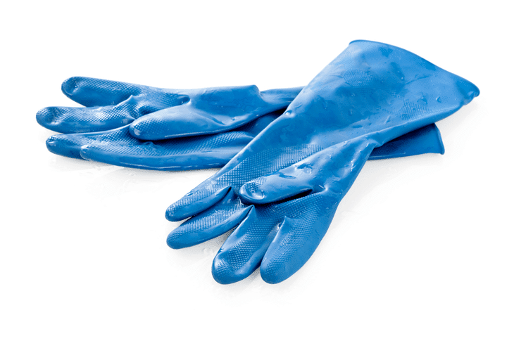 To protect you hands from the concentrated formulation of the rooting hormone, it is recommended to wear rubber gloves