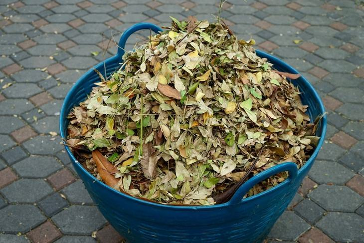 Use a leaf shredder to get rid of your garden waste and turn it into a mulch
