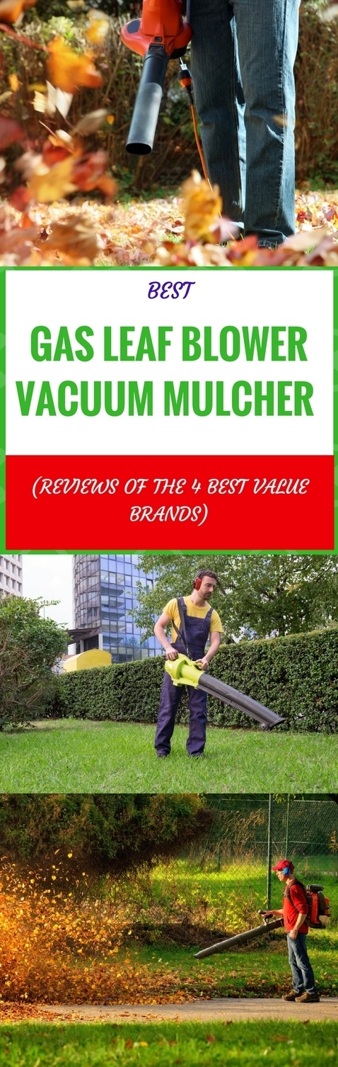best gas leaf blower vacuum mulchers pin it