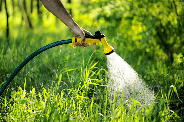 A nozzle for your hose is helpful to control your water flow and to avoid harsh watering that may affect the plant's health