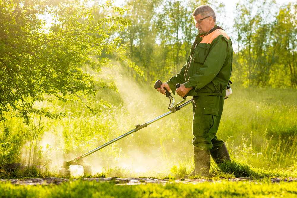 An effective cutter trimmer can help you dispose of both weeds and small trees easily
