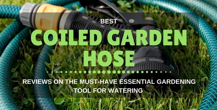 Best Coiled Garden Hose: Reviews On The Must-Have Essential Gardening Tool For Watering