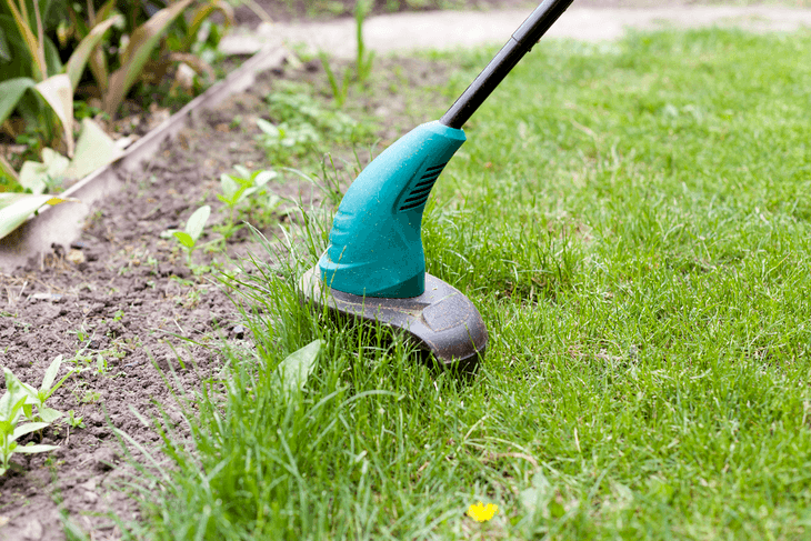 Getting rid of weeds is one of the most important things to do to keep your garden fresh