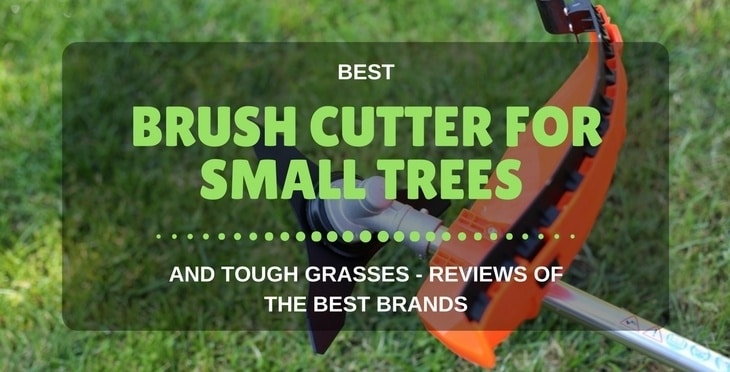Best Brush Cutter For Small Trees And Tough Grasses – Reviews Of The Best Brands