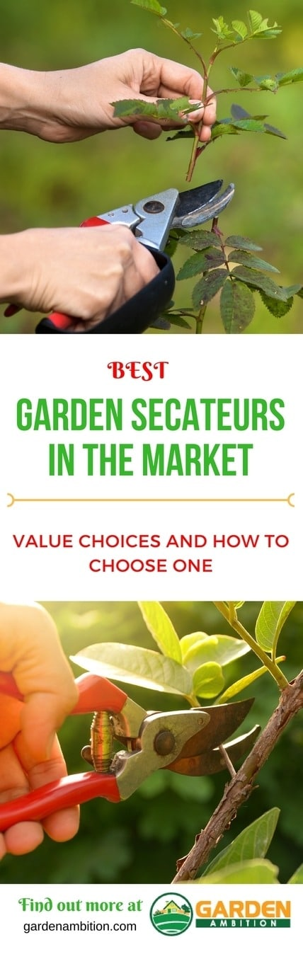 best garden secateurs pin it