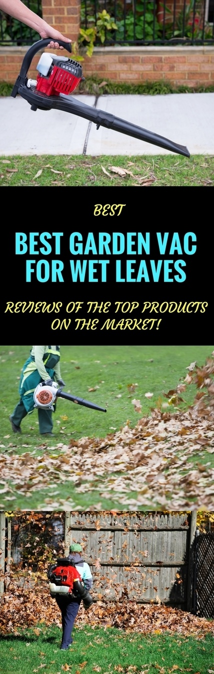 best garden vac for wet leaves pin it