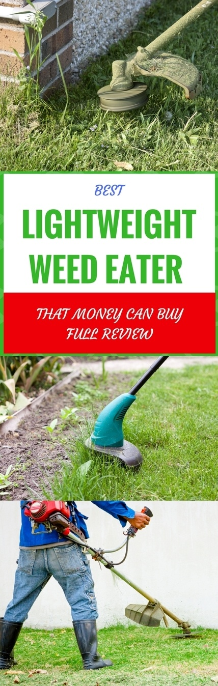 best lightweight weed eater pin it