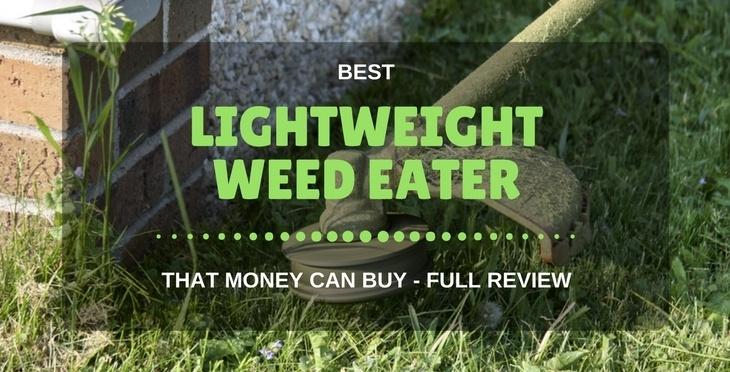 best lightweight weed eater