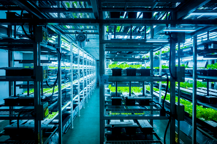 The hydroponic system requires a refrigeration unit necessary for optimal plant growth
