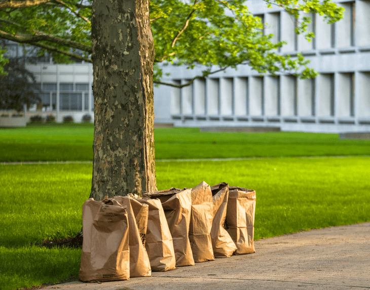 Use compostable bags when collecting your yard wastes