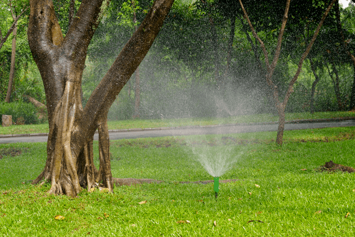 With creativity, you can make use of a DIY sprinkler system for your lawn