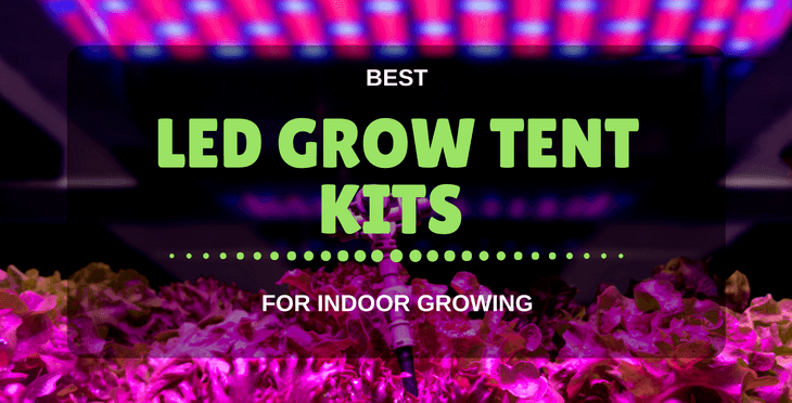 best LED grow tent kits