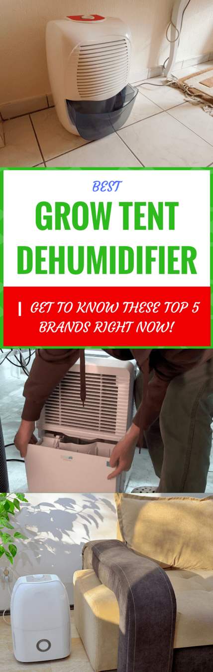 Best Grow Tent Dehumidifier | Get To Know Top 5 Brands Right
