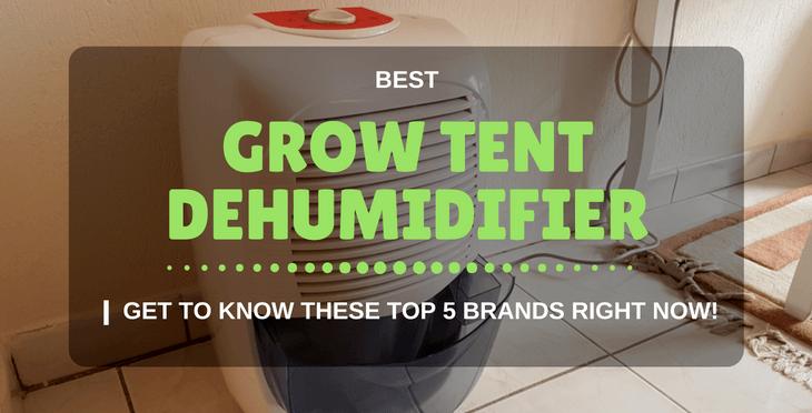 best grow tent dehumidifier