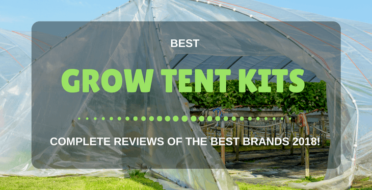 5 Best Grow Tent Kits: Complete Reviews Of The Best Brands!